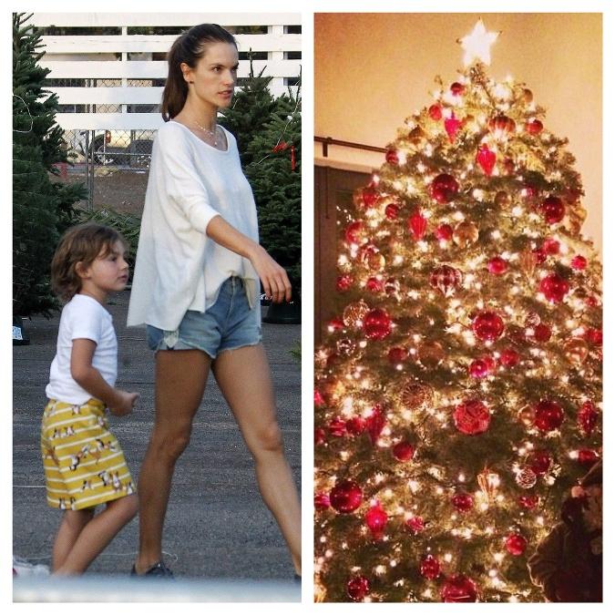 Pre dokonalý vianočný stromček
