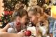 Pozrite sa, ako sa na Vianoce pripravujú celebrity: Mária Čírová zdobí kozub, Dara Rolins už postavila stromček